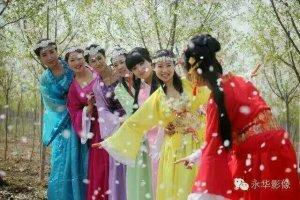 樱花文化节